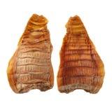 竹子是烹调烹调使用的特殊大阳台将的干桂林图象longji射击的瓷汉语 这些玉兰用于烹调特别汉语 图库摄影