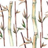 竹子绿色叶子  叶子植物植物园花卉叶子 无缝的背景模式 皇族释放例证