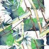 竹子绿色叶子  叶子植物植物园花卉叶子 无缝的背景模式 库存例证