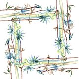 竹子绿色叶子  叶子植物植物园花卉叶子 框架边界装饰品正方形 皇族释放例证