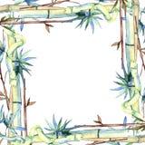 竹子绿色叶子  叶子植物植物园花卉叶子 框架边界装饰品正方形 库存例证