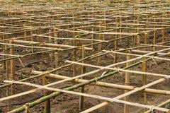 竹子镶板保税的结构 库存图片