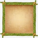 竹子阻止在透明背景隔绝的框架 库存例证
