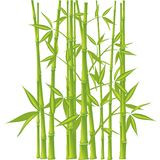竹子,向量(滤网) 库存例证