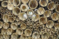 竹子以水平地被削减的各种各样的大小 免版税库存照片