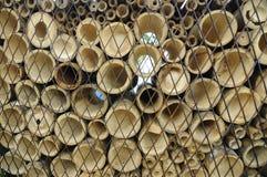 竹子以水平地被削减的各种各样的大小 免版税图库摄影