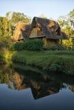 从竹子建造的Eco小屋在亚马逊地区 免版税库存照片