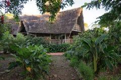 从竹子建造的Eco小屋在密林 库存图片