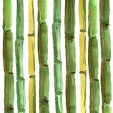 竹最佳的设计的手画的背景 向量例证
