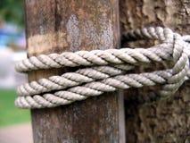 竹杆附加对结构树 免版税库存照片