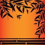 竹树和叶子在日落时间 库存例证