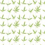 竹框架绿色叶子 皇族释放例证