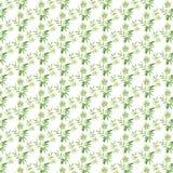 竹框架绿色叶子 库存例证