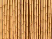 竹棕色纹理 库存照片