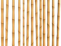 竹棕色纹理 免版税图库摄影