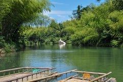 竹森林和湖 免版税库存照片
