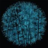 竹森林在晚上 免版税库存照片