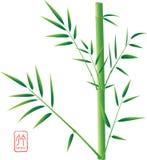 竹汉语 免版税图库摄影