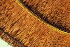 竹沙滩伞背景  热带假日横幅 免版税库存图片