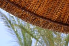 竹沙滩伞背景  热带节假日概念 免版税库存图片