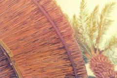 竹沙滩伞背景  热带节假日概念 库存图片