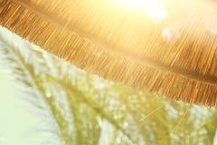 竹沙滩伞背景  热带节假日概念 免版税库存照片