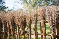 竹篱芭样式在日本禅宗庭院里 图库摄影