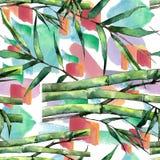 竹绿色叶子 叶子植物植物园花卉叶子 无缝的背景模式 图库摄影