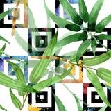 竹绿色叶子 叶子植物植物园花卉叶子 无缝的背景模式 皇族释放例证