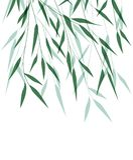 竹绿色叶子 向量例证