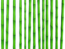 竹绿色纹理 免版税图库摄影