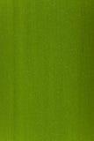 竹绿色表面 免版税图库摄影
