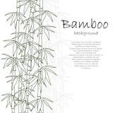 竹背景白色 向量例证
