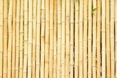 竹范围 图库摄影