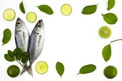 竹荚鱼类crumenophthalmus、大眼鲷大量、鱼用柠檬和叶子是 库存图片