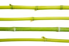 竹设计 库存图片