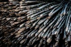 竹钉,木材料 图库摄影