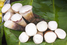 笋- Bamboosaceae泰国市场 库存照片