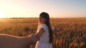 笑的女孩横跨领域跑用握在金黄太阳的强光的麦子一只人` s手 慢的行动 股票视频