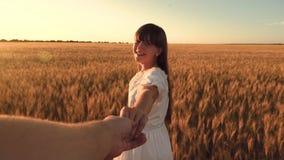 笑的女孩横跨领域跑用握在金黄太阳的强光的麦子一只人` s手 慢的行动 股票录像