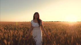 笑的女孩走领域用在金黄太阳的强光的麦子 慢的行动 影视素材
