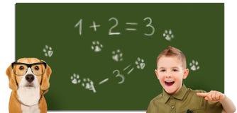 笑的男孩,指向在一条狗的手指在校务委员会的背景 免版税库存照片