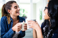 笑美丽的女性的朋友,当喝咖啡时 免版税库存图片