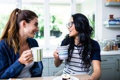 笑年轻女性的朋友,当喝咖啡时 免版税库存图片