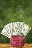 100$笔记在异乎寻常的绿色背景的一个钱包里 免版税库存图片