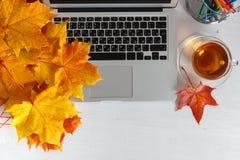 笔记本、膝上型计算机、花和秋叶 在空白背景的顶视图 秋天舱内甲板位置 嘲笑为与工作场所的书刊上的图片 库存图片