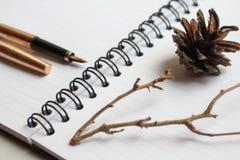笔记本、金笔和音乐会在书桌上,干燥锥体和分支装饰了桌,特写镜头 库存图片