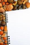 笔记本和五颜六色的秋天 库存图片