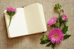 笔记本和翠菊构成在角落 免版税图库摄影