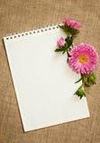 笔记本和翠菊 免版税库存照片